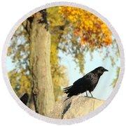Three Ravens On A Gothic Graveyard Day Round Beach Towel