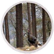 Gould's Wild Turkey IIi Round Beach Towel