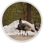 Gould's Wild Turkey Iv Round Beach Towel