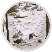 Gould's Wild Turkey Viii Round Beach Towel