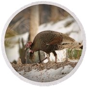 Gould's Wild Turkey Vix Round Beach Towel