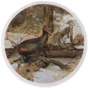 Gould's Wild Turkey Xiii Round Beach Towel