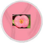 Pink Flower  Round Beach Towel