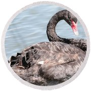 Graceful Black Swan Round Beach Towel