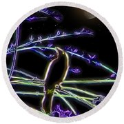 Grackle In The Willow Tree Round Beach Towel
