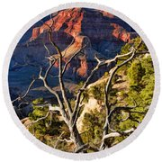 Grand Canyon Branches Round Beach Towel