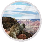 Grand Canyon Squirrel Round Beach Towel
