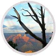 Grand Canyon Tree Round Beach Towel