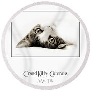 Grand Kitty Cuteness Miss Tilly Poster Round Beach Towel