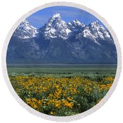 Grand Teton Summer Round Beach Towel