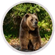 Grandpa Bear Round Beach Towel