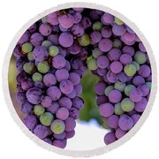 Grape Bunches Portrait Round Beach Towel
