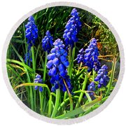 Grape Hyacinths 2014 Round Beach Towel