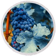 Grapes - Blue  Round Beach Towel by Hannes Cmarits