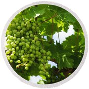 Grapes In A Vineyard Round Beach Towel