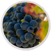 Grapes On The Vine Round Beach Towel