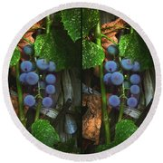 Grapes On The Vine - Gently Cross Your Eyes And Focus On The Middle Image Round Beach Towel