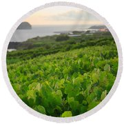 Grapevines And Islet Round Beach Towel by Gaspar Avila