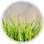 Grass Blades Round Beach Towel