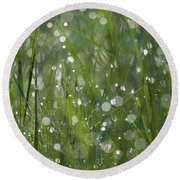 Grass Fairies... Round Beach Towel