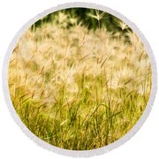 Grass Feathers Round Beach Towel