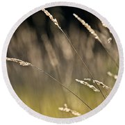 Grasses Blowing Round Beach Towel