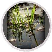 Grasses In Water Round Beach Towel