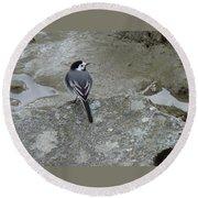 Gray Bird Round Beach Towel