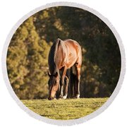 Grazing Horse At Sunset Round Beach Towel