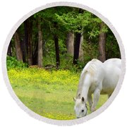 Grazing In Golden Fields Round Beach Towel