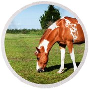Grazing In Style Round Beach Towel