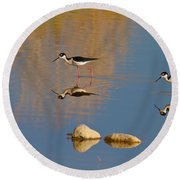 Grazing Stilts Round Beach Towel