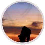 Grazing Under The Moon Round Beach Towel