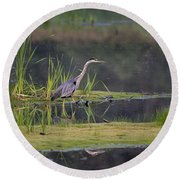 Great Blue Heron At Down East Maine Wetland Round Beach Towel