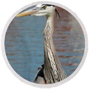 Great Blue Heron By The Water Round Beach Towel