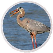 Great Blue Heron Flipping A Shrimp Round Beach Towel