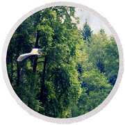 Great Blue Heron Flying Past The Trees Above Trojan Pond 2 Round Beach Towel