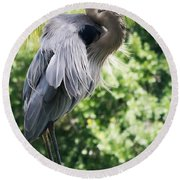 Great Blue Heron IIi Round Beach Towel