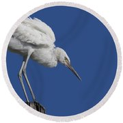 On Top Of The World... Pole Round Beach Towel