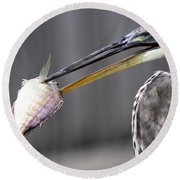 Great Blue Heron - Just Fred Round Beach Towel