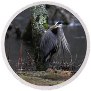 Great Blue Heron On The Clinch River Round Beach Towel