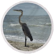 Great Blue Heron Standing Tall Round Beach Towel