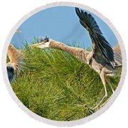 Great Blue Herons Round Beach Towel