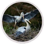 Great Blue Herons Nesting Round Beach Towel