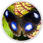 Great Eggfly Butterfly Round Beach Towel