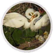 Great Egret 2am-7177 Round Beach Towel