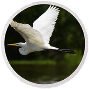Great Egret Amazon River Round Beach Towel