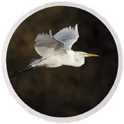 Great Egret Flying By Round Beach Towel