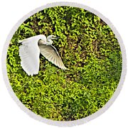 Great Egret Flying Over Rapti River In Chitwan Np-nepal Round Beach Towel