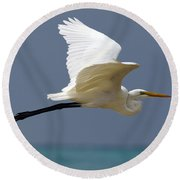 Great Egret Galapagos Round Beach Towel